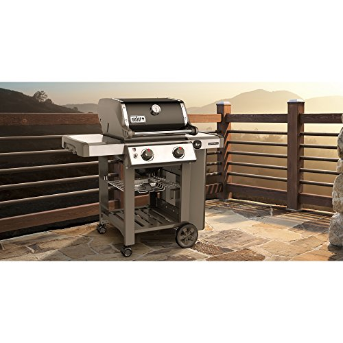 weber genesis ii e 210 natural gas grill barbecue smokers and grills indoor stoves and. Black Bedroom Furniture Sets. Home Design Ideas