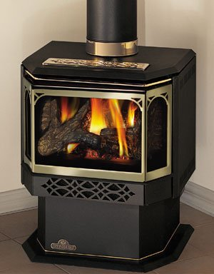 Napoleon-GDS28-1N-Fireplace-Natural-Gas-Stove-Direct-Vent-30000-BTU-Painted-Metallic-Black
