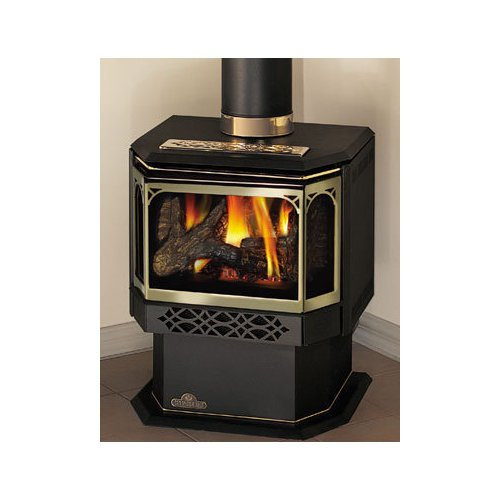 Napoleon Gds28 1n Fireplace Natural Gas Stove Direct
